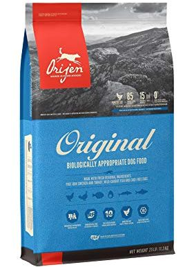 Dog Food For Your Dog While Camping