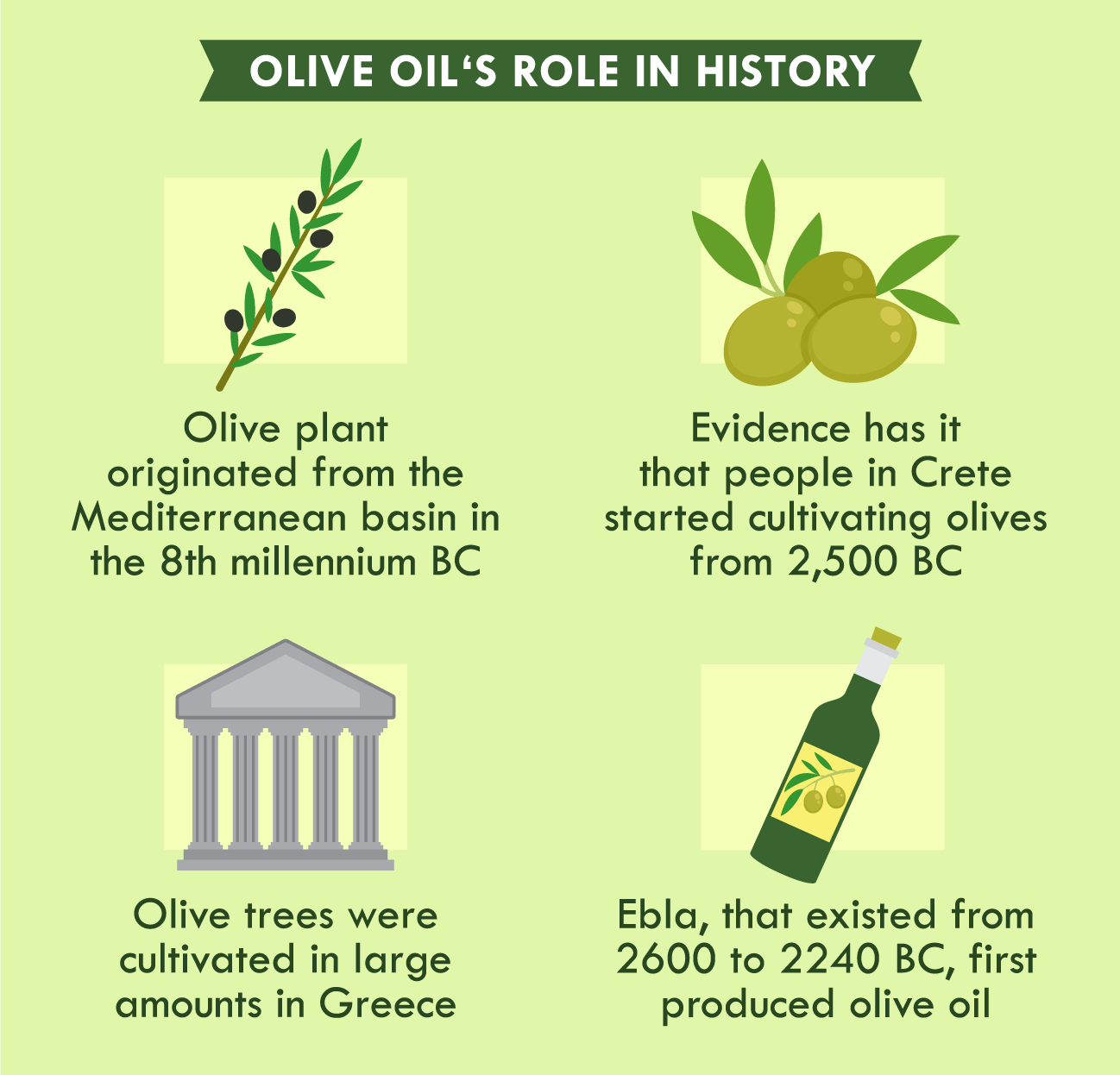 illustration of olive oil's role in history