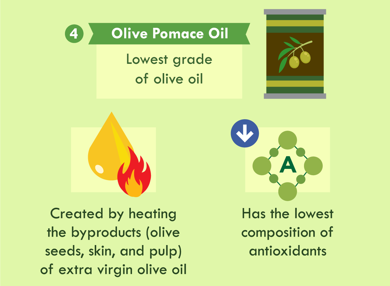 illustration of olive pomace oil