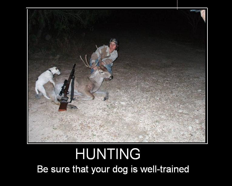 Funny Hunting Quotes Quotesgram