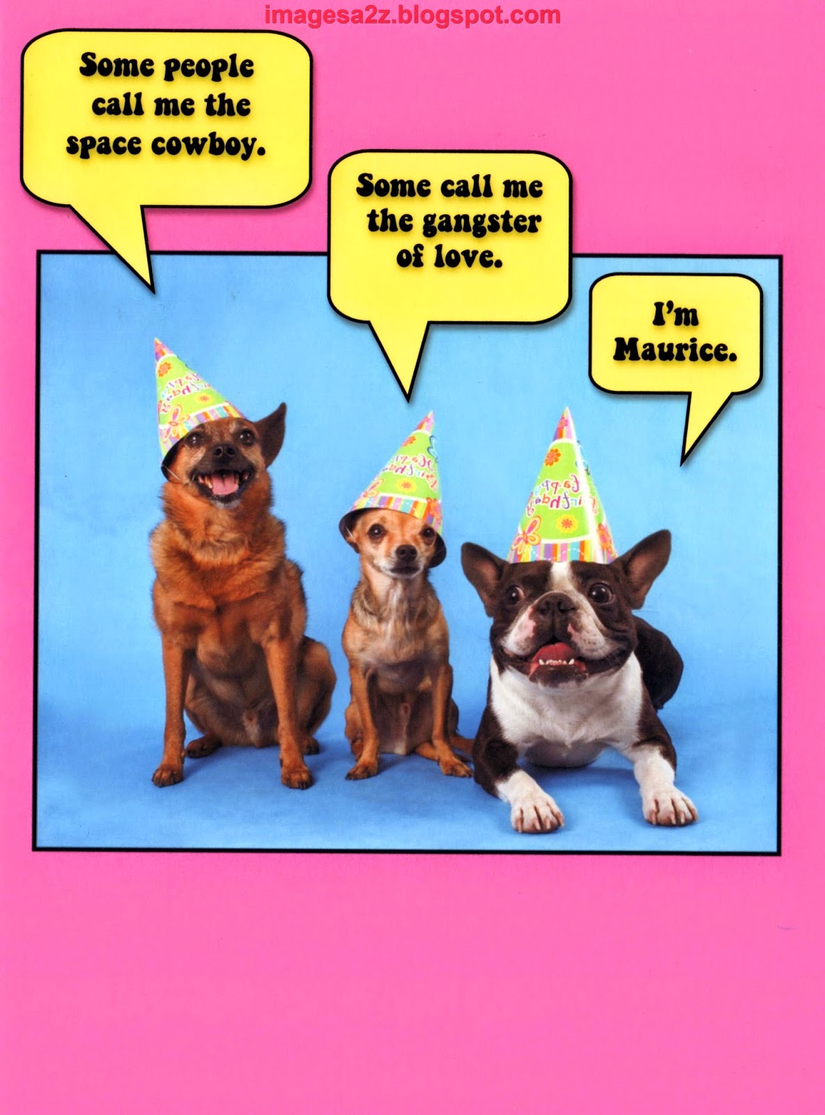 Funny Belated Birthday Quotes Quotesgram