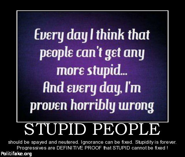 Funny Quotes About Stupidity And Ignorance Quotesgram