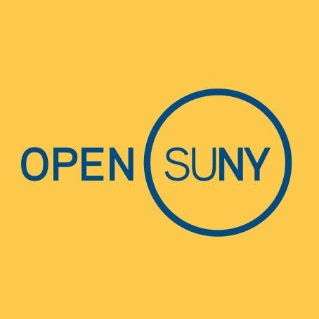 open suny courses quality review