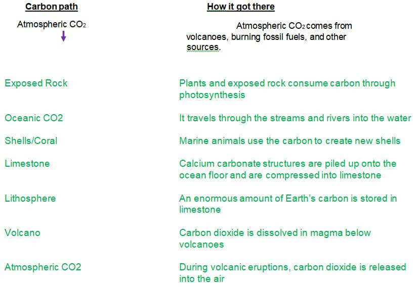 carbon cycle gizmo answer key - part c