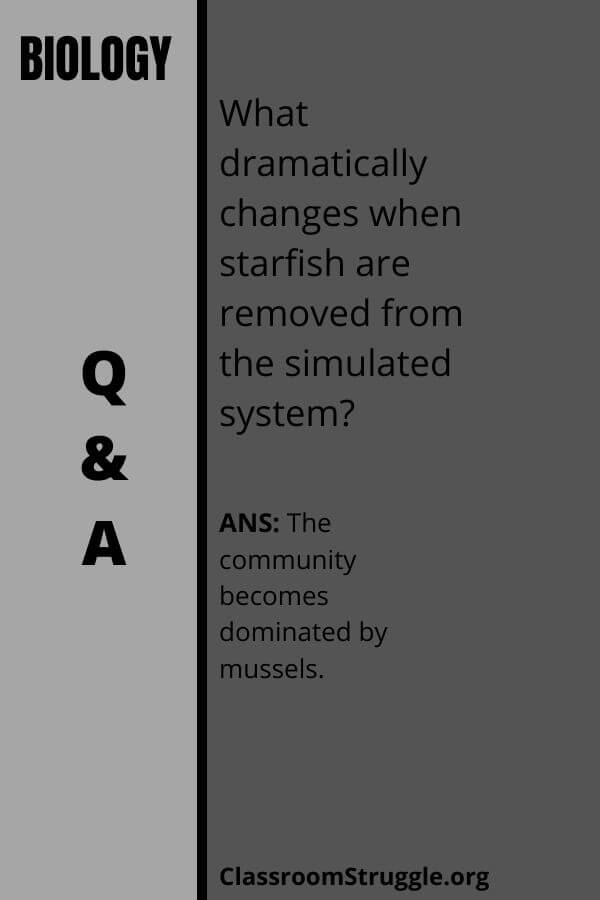 What dramatically changes when starfish are removed from the simulated system?