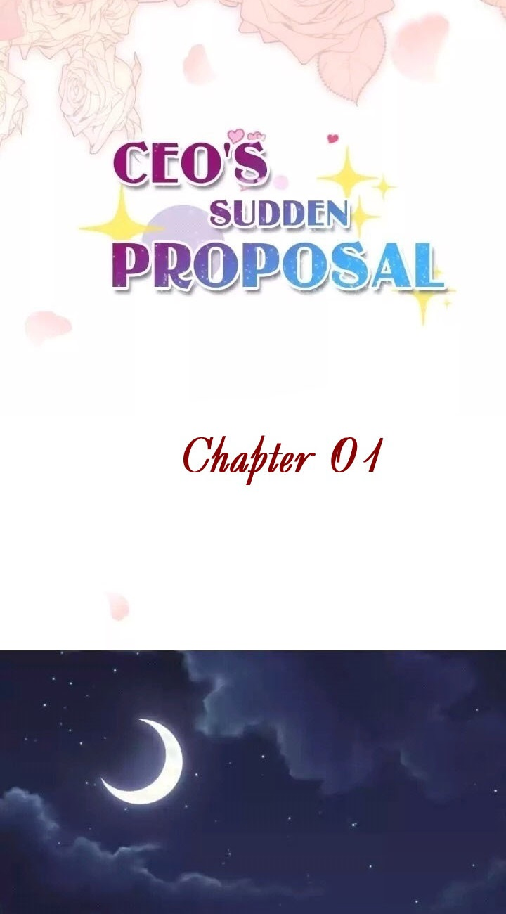 CEO's Sudden Proposal Chapter 1