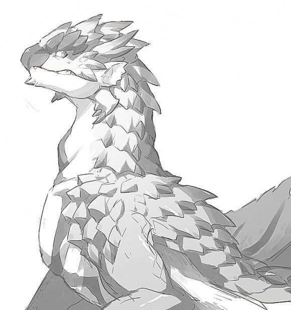 Monster Hunter Rathalos Wyvern Coloring Pages