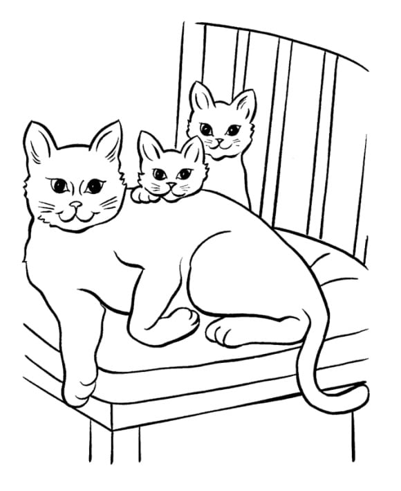 Coloring Page Cats HD