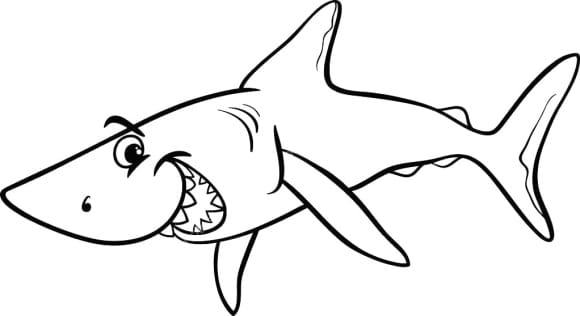 beautiful baby shark coloring page
