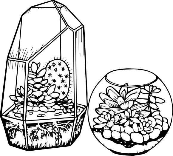 beautiful cactus coloring page