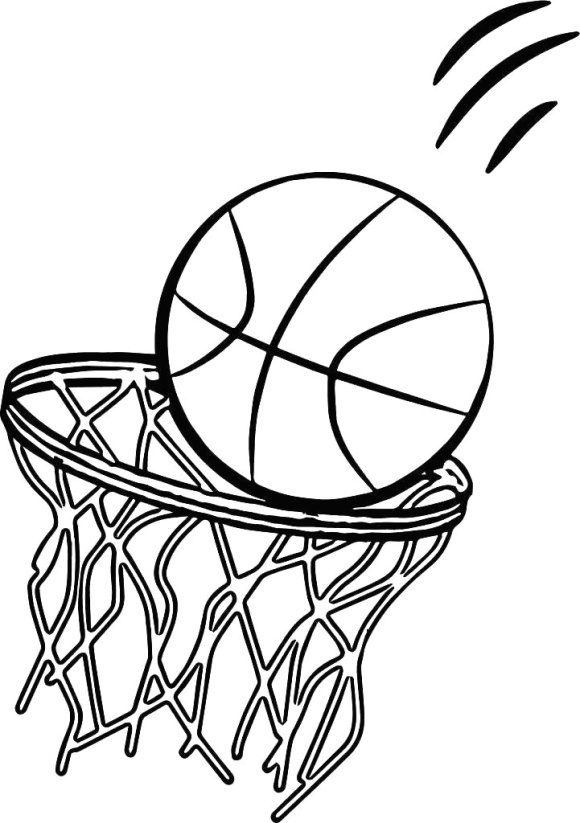beautiful coloring page basketball free