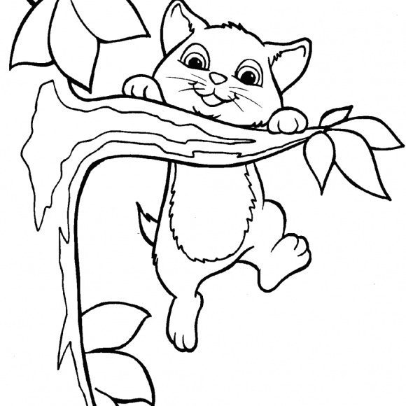 beautiful coloring page cat free 1