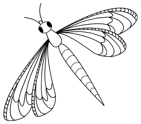 fresh dragonfly coloring page