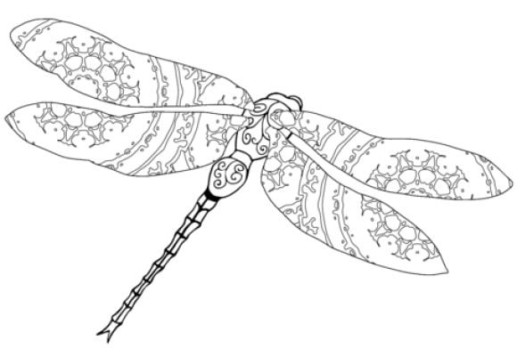 inspirational dragonfly coloring page