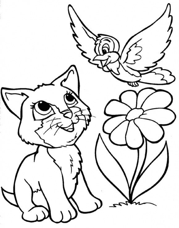 new coloring page cats hd 1