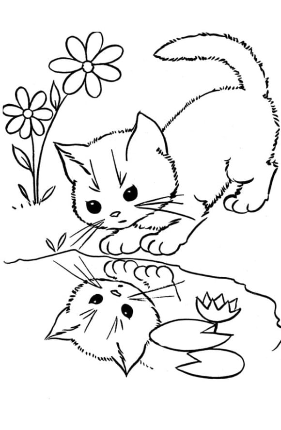 unique coloring page cats hd