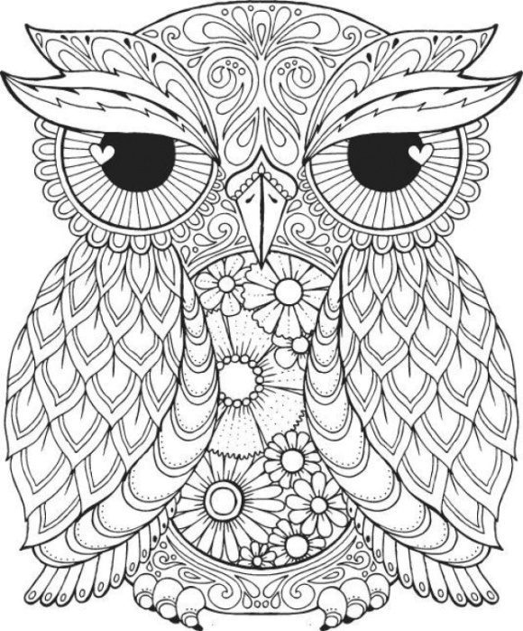 awesome coloring page owl hd