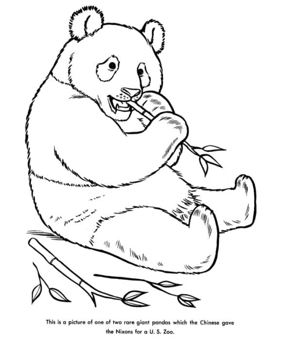 best of coloring page panda free