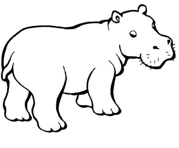 cool hippo coloring page