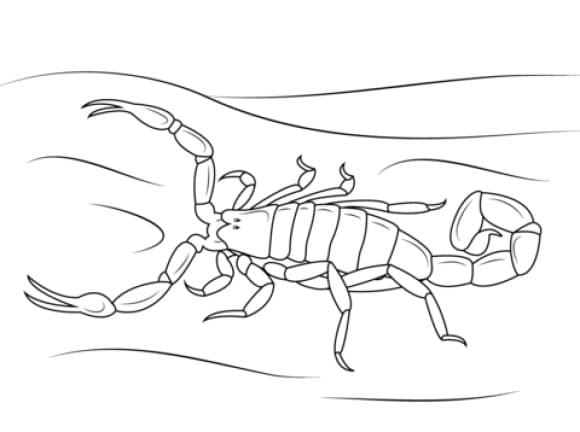fresh scorpion coloring page 1