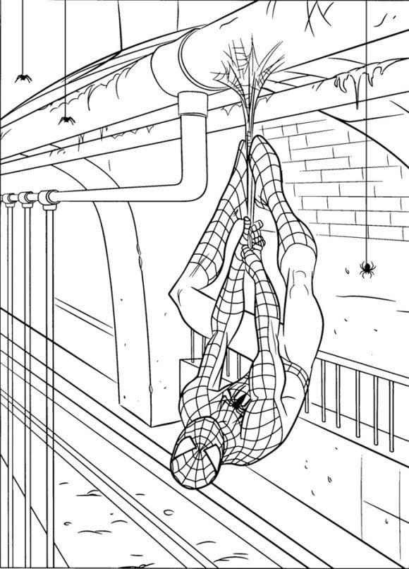 awesome coloring page spiderman printable