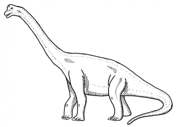 best of brachiosaurus coloring page hd