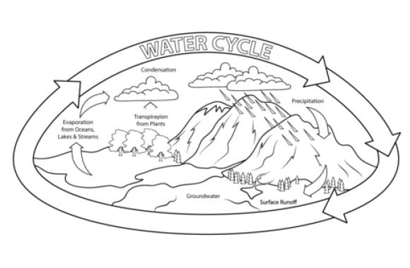 best of water cycle coloring page