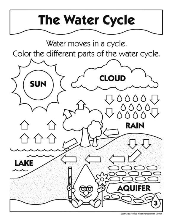 unique water cycle coloring page