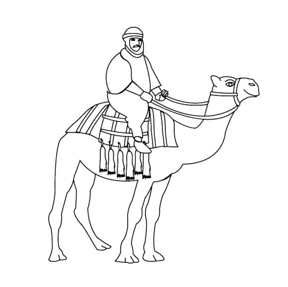 awesome camel coloring page