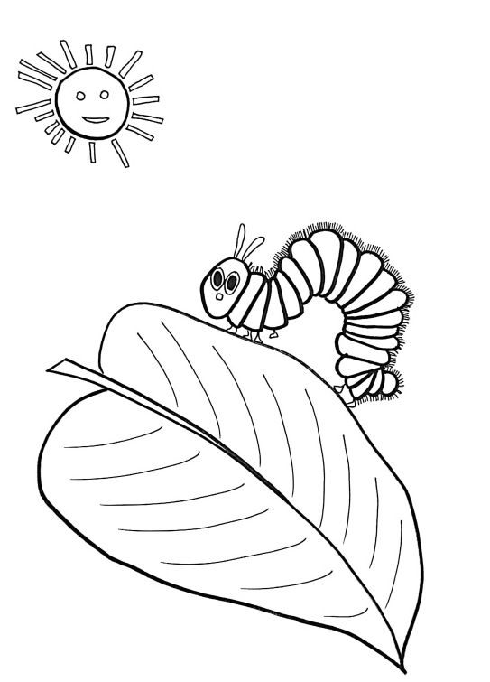 best of very hungry caterpillar coloring page