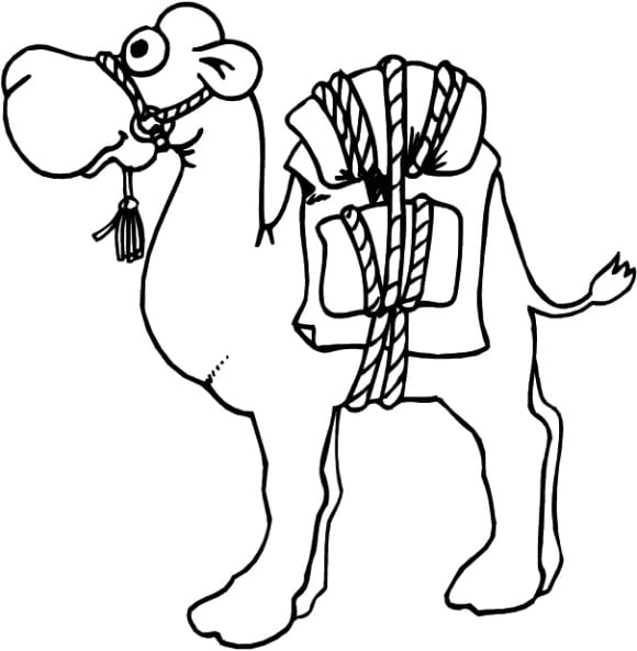 cool camel coloring page 1