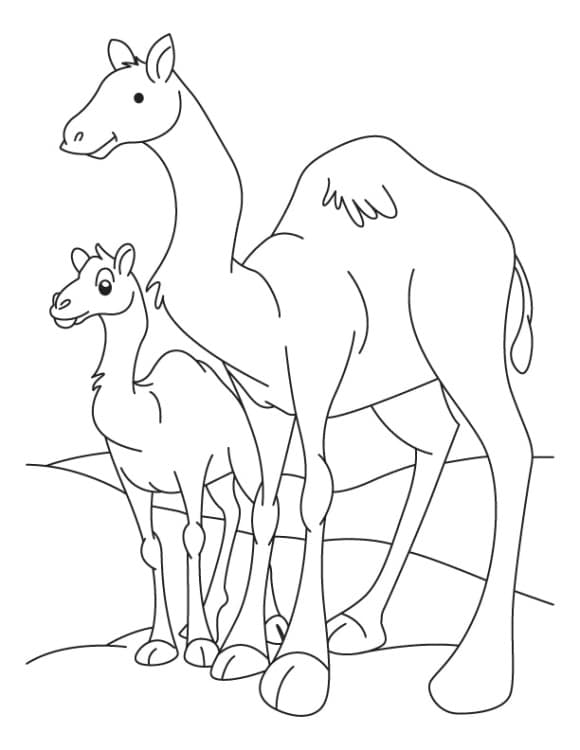 inspirational camel coloring page