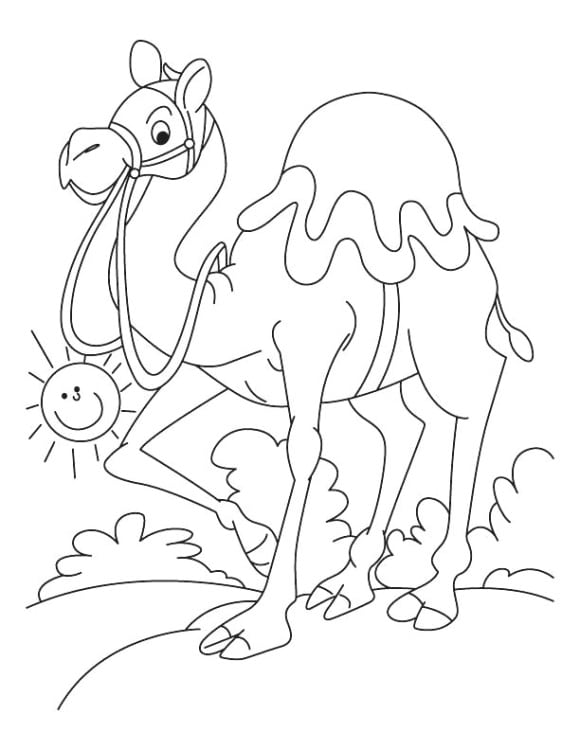 lovely camel coloring page 2