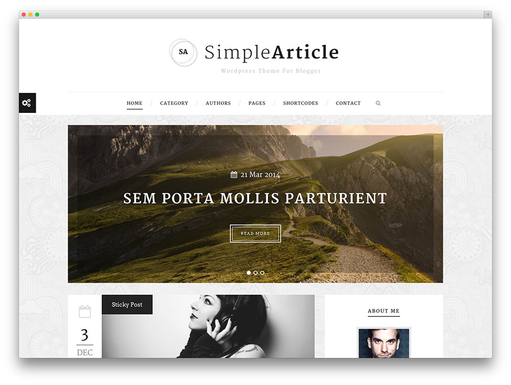 simplearticle blogging theme