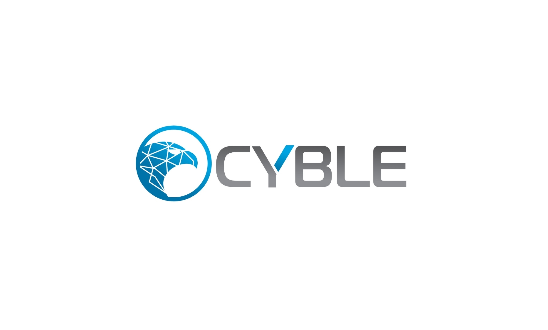 Cyble Announces $4 Million in Seed Funding - Digpu News