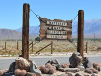 Trump And Manzanar