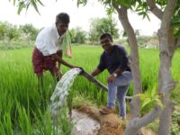 India's Invisible Water Wizards