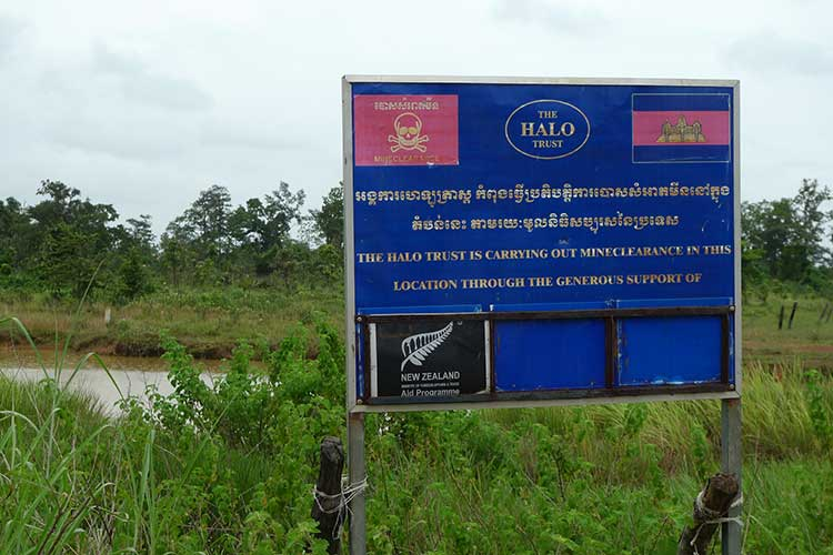 rice fields are still synonymous to minefields