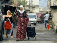 What's Behind the 'Disappearance' Of 420,000 Palestinians in Lebanon?