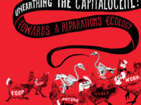 Unearthing The Capitalocene: Towards A Reparations Ecology