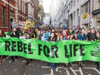 Extinction Rebellion: From the UK to Ghana and the US, Climate Activists Take Civil Disobedience World-Wide