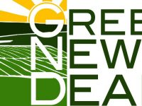 I love the Green New Deal but …