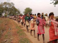 Corporate Conservationists use judicial process to annihilate India's Indigenous People