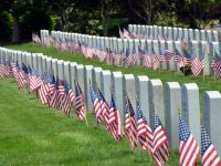 Mourn On Memorial Day & Indict Our Ruling Criminally Insane Murderous Investors in Wars on Wall St.