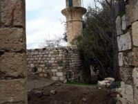 The ruins of a mosque in the forcibly depopulated Palestinain village of Hittin, located a few kilometers west of Tiberias [Photo credit: Jehad Abu Rayya]