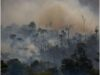 Huge rise in Amazon wildfires alarms scientists and environmental groups