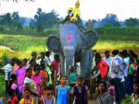 In Paraswadi, Gond festivities begin with a procession of Ravan on an elephant float. Photo: Arunangsu Roy Chowdhury.