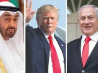 """Don't be Hoodwinked by Trump's UAE-Israel """"Peace Deal"""""""