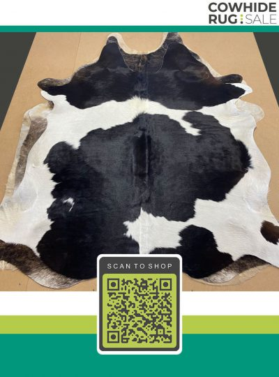 Large Traditional Bw Cowhide 7 X 8 Bw 19 500