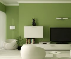 Green Wall Accents